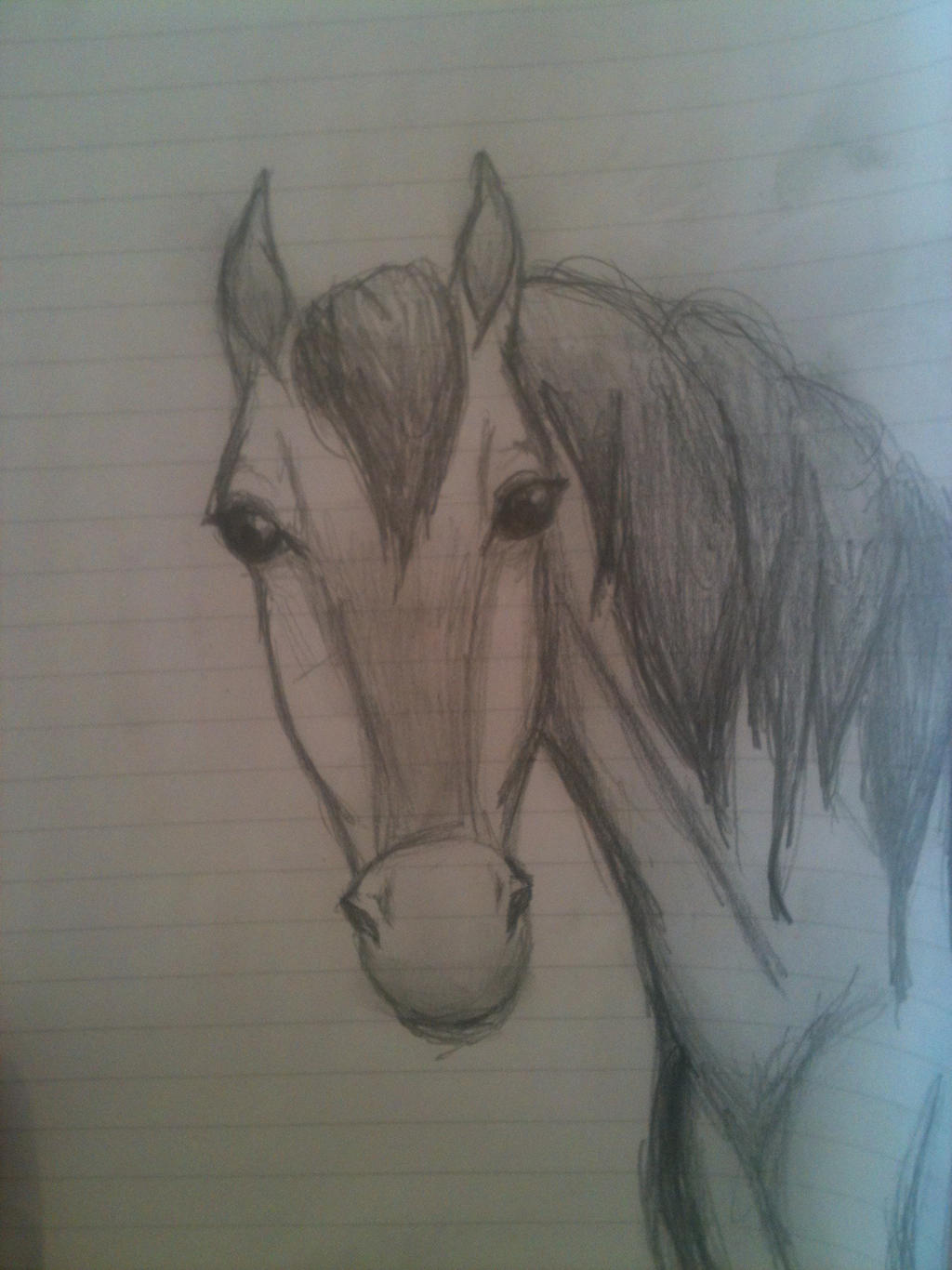 Horse sketch by Adriellovesart