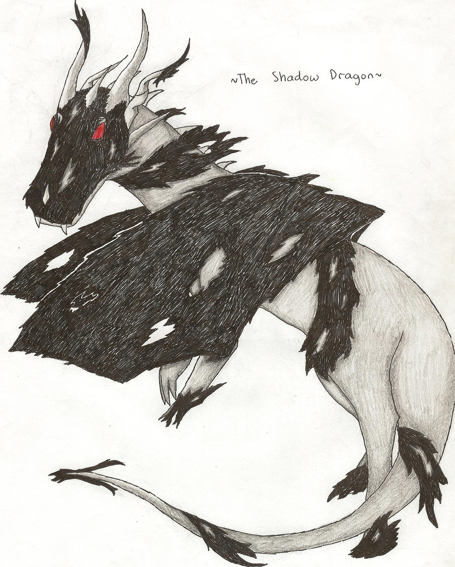 The Shadow Dragon by Skyleap
