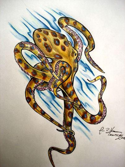 blue ringed octopus by firepils on deviantart. Black Bedroom Furniture Sets. Home Design Ideas