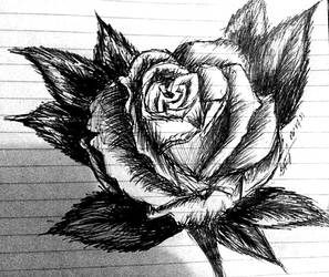 Rose in pen by rixiibabe21