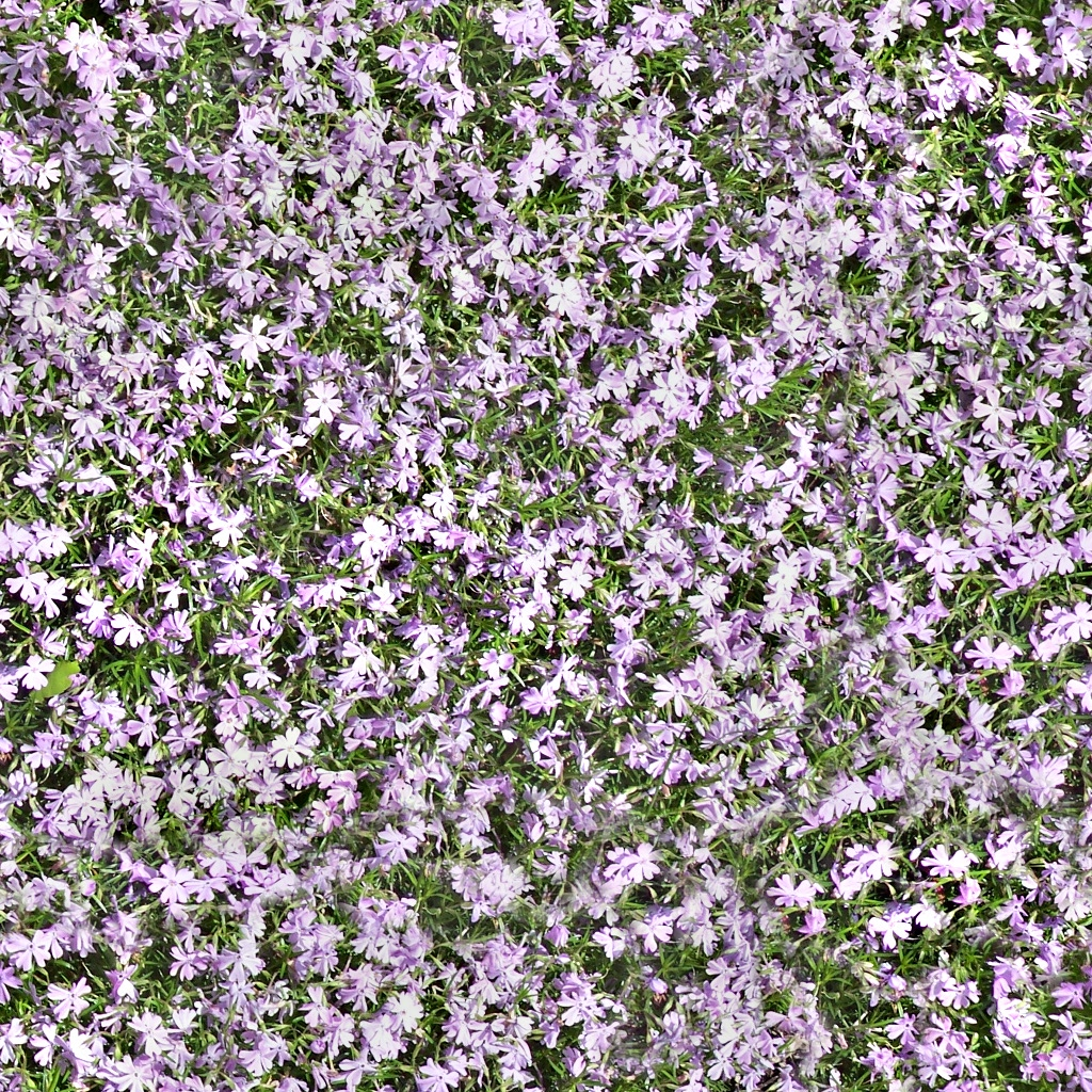 texture background patterns flowers - photo #34