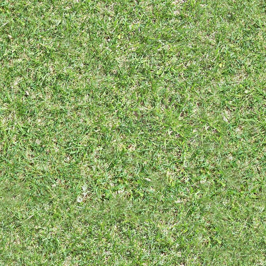 seamless tiled grass texture