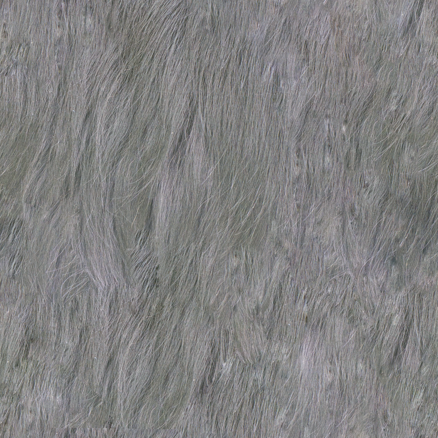 Seamless Tiling Fur Texture 2048x2048 By Lendrick On