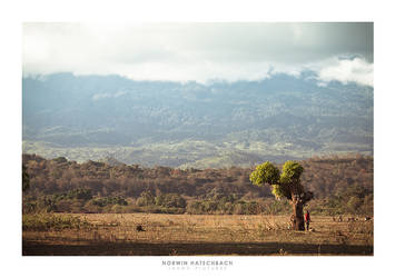 Africa 011 by jahno-pictures