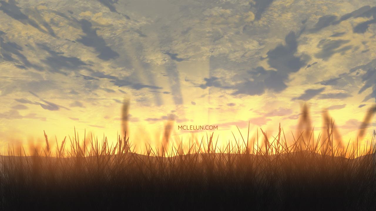 evening grass
