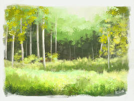 forest by mclelun