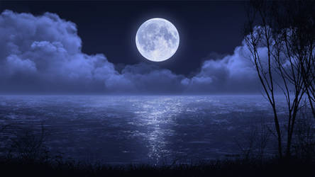 Night Lake Scene