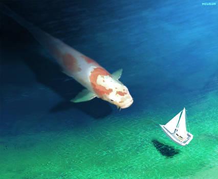 Big Koi Fish