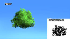 Tree Brush From Photo