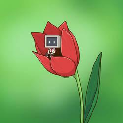 Resting Inside Tulip Flower