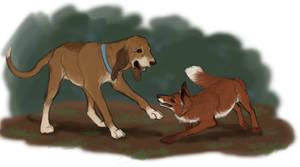 Todd and Copper