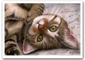 Tabby Kitten Pastel Painting by art-it-art
