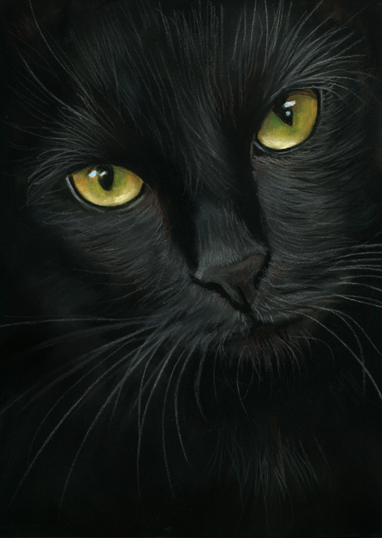 black cat portrait- pastel painting by art-it-art