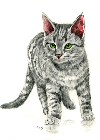 Tabby Kitten Pencil Drawing by art-it-art on DeviantArt Tabby Cat Cartoon Drawing