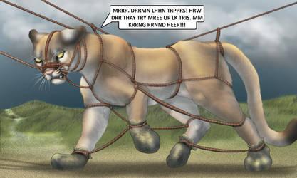 Tovu in Ropes by Raptorroper