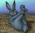 Rabbit Hogtied by Raptorroper