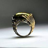 Amber ring 2 by GatoJewel-DerKater