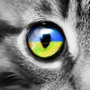 GatoJewel-DerKater's Profile Picture