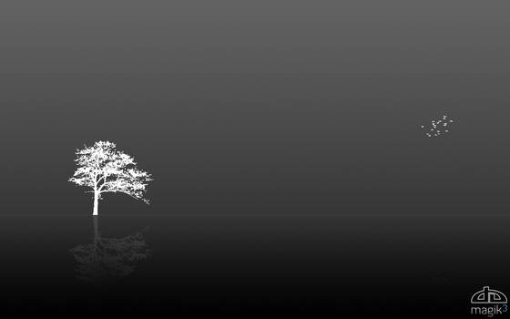 A tree and Some brids invert