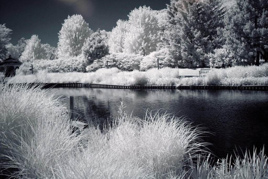 Infrared Pond by Wallcrawler62