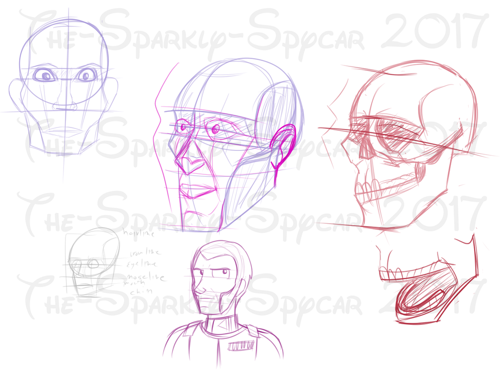 Human Anatomy Practice #2 - Head Proportions by The-Sparkly-Spycar ...