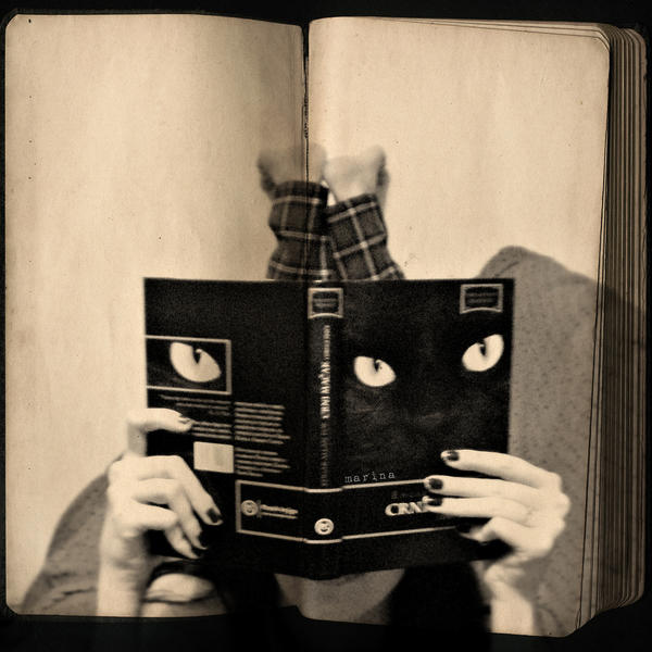 Reading Black Cat by MarinaCoric