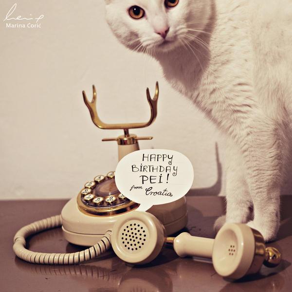 Birthday Wishes by MarinaCoric