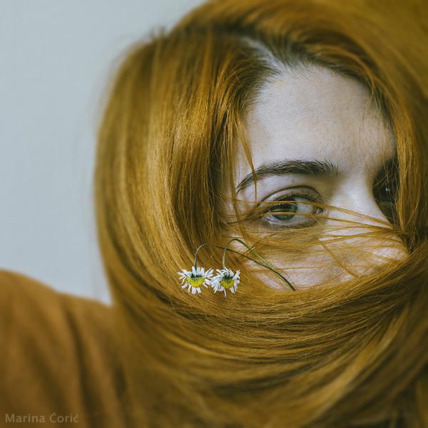 Pushing Daisies by MarinaCoric