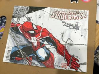 The Amazing Spider-Man by Madmonkeylove