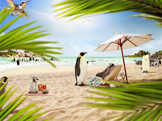 Penguins on the beach by Funialstwo