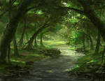 A River In The Forest