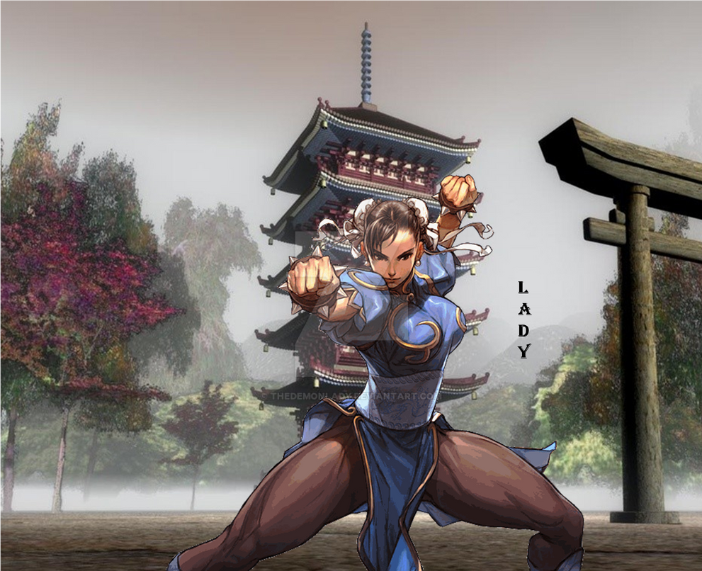 Chun Li training 2 by TheDemonLady