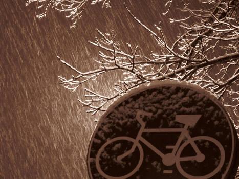 20winter12_snowbike