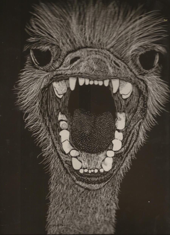 Angry Ostrich On Scratchboard By HadukaApuronTatsujin DeviantArt