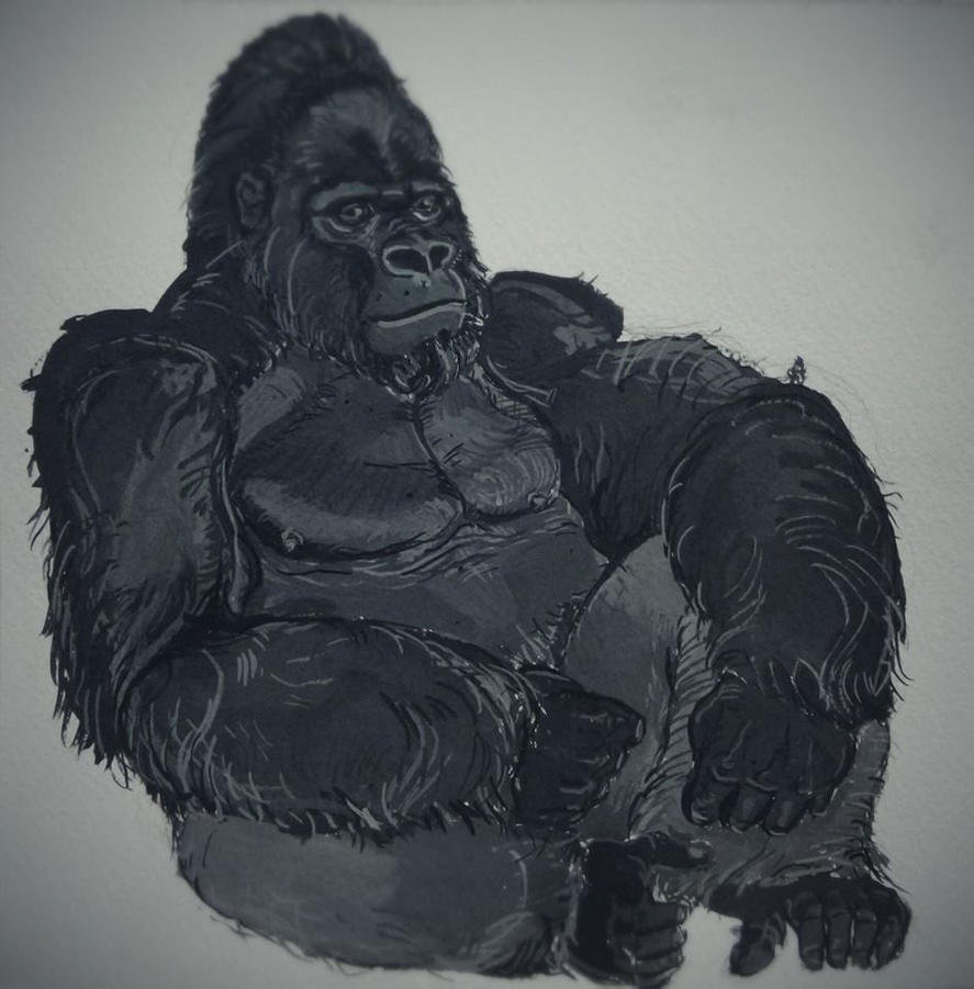 Gorilla study by smallblackbook
