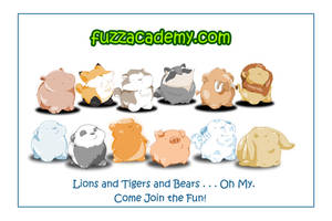 The Fuzz Academy Launches by mree