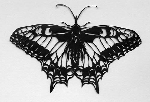 Butterfly IV by mib4art