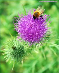 buzz lightyear by retro-philj