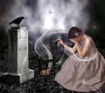 The Bridal Widow