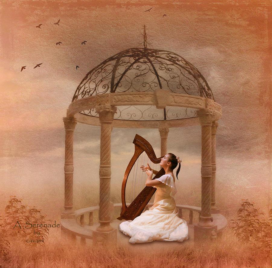 A Serenade by CaryAndFrankArts