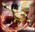 Prince Zuko of the Fire-nation
