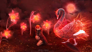 Black Swan by AmiraAshraf