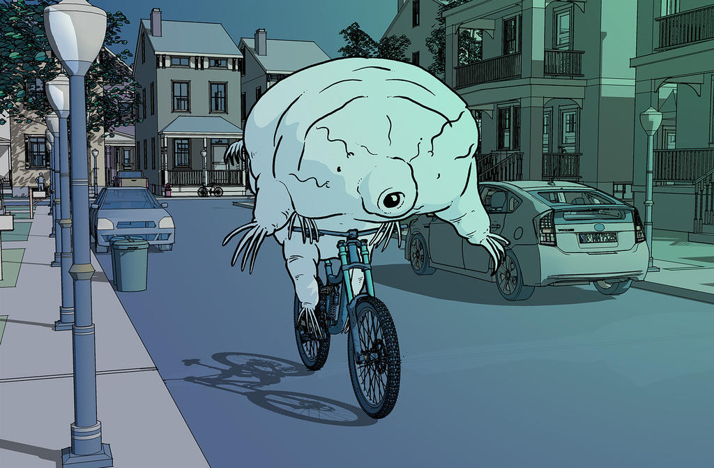 Riding my bike by diegogue