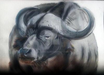 Water Buffalo by Slogirl64