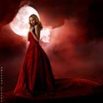 Scarlett Night
