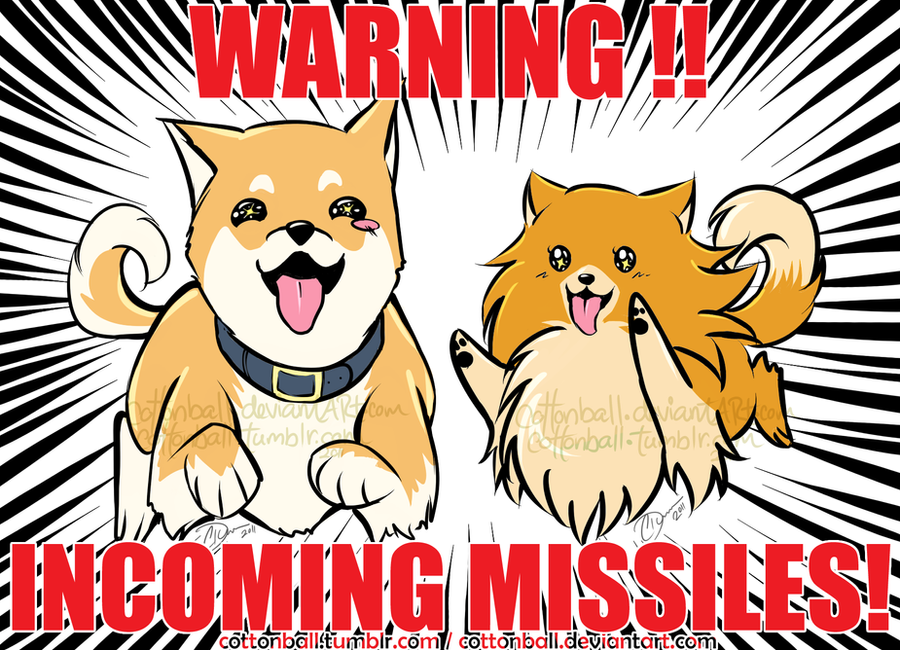 MISSILES by cottonball