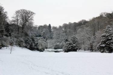 Snowy wonderland by Mirax-chan