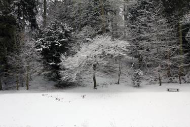 Snowy Wonderland 2 by Mirax-chan