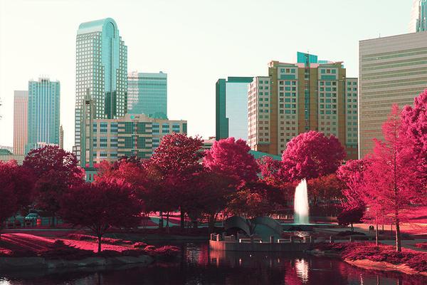 Pink Summer by LashelleValentine