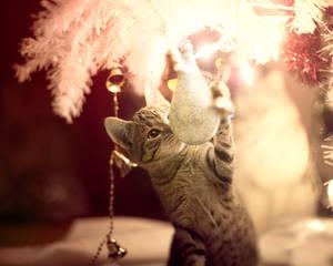 Christmas Kitties II
